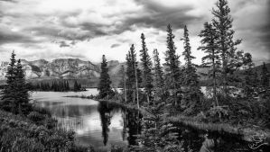 Jasper National Park by fweddy