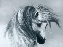 horse by yesido521