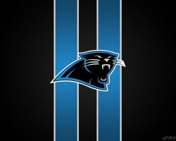 Panthers Wallpaper by pasar3