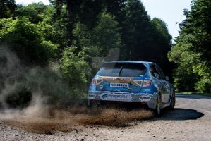 tribec rally 2011 - 4 by donfoto