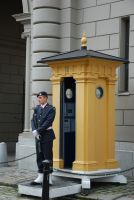 Guard at Stockholm Palace by hoshitsu
