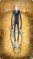 Slender by FreeD00m