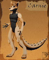 Ref Sheet Comish - Carnie by TwilightSaint