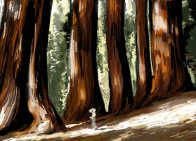 Giant trees by Finnguala