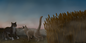 Meeting in a wheat field by Nayris