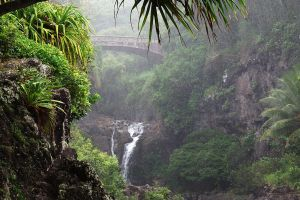 Misty bridge 1 - Maui by wildplaces