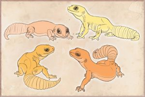 Leopard Gecko Customs by ResidualAdopts