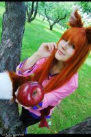 Spice and Wolf - Horo 2 by namstar91