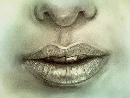 Cataclysm's Lips tutorial by Don-Berry