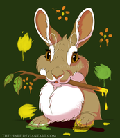 Animal Artists: Rabbit by The-Hare