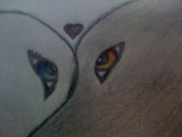 close up of wolfy love eyes by Alpha-Female13