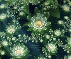 Fractal Snow Lotus by fengda2870