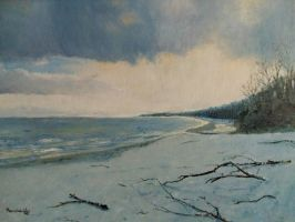 Winter, beach by mwolski