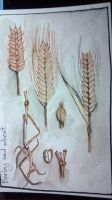 Wheat - Journal Entry by DragonflysDaughter