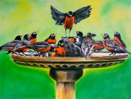 The Bird Bath by dx