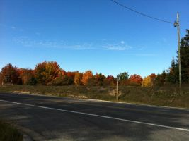 Fall Colors 10/3/12 by dcrods