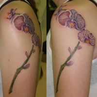 Orchid tattoo by captainmonkeypants