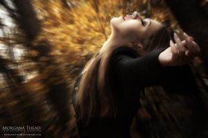 Golden symphony by MorganaThead