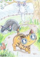 ACEO amazed kitten first explore by KingZoidLord