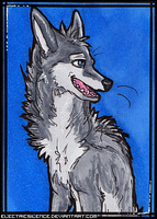 Silver ACEO by ElectricSilence