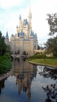 disneys magic kingdom castle by Duckmad