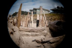 Driftwood Palace by Evanescent-Chaos