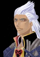 ansem and stuff by shampoo