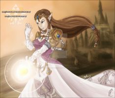 Princess Zelda: Come At Me by Lady-Zelda-of-Hyrule