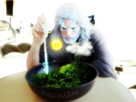 World In A Bowl by l1nk32167