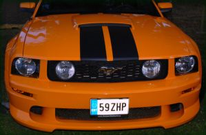 Ford Mustang by krissu345