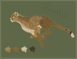 Jupiter Quick Ref by Soldjagurl