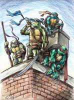 TMNT by GraphiteFalcon
