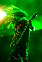 Slayer at Hellfest 2008 p.4 by innaford