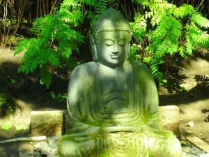 Buddha Stock by CD-STOCK by CD-STOCK