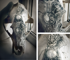 Bear's skull /for carving//process/ by quidames