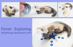 Ferret - Exploring - SOLD by Bittythings