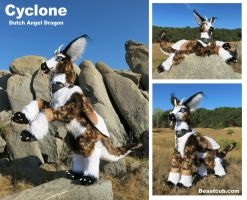 Cyclone - Dutch Angel Dragon by LilleahWest