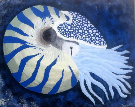 The Majestic Nautilus by tacoroach