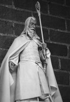 Gandalf The White by Neville6000