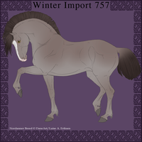 Nordanner Winter Import 757 by DemiWolfe-Stables