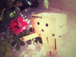 Danbo Found A Flower by GeekInDisguise