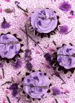 Garden Lavender Infused Chocolate Cupcakes by theresahelmer