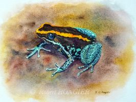 Dyeing poison frog by Robbiecat