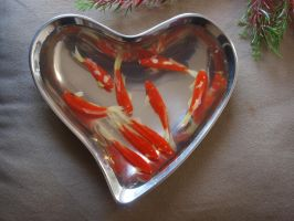 goldfish in resind 3d art from goldfishinspiration by goldfishinspiration