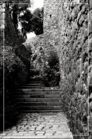 Dinan 01 by 0-Photocyte