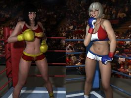 8 The Fighters Prepare For a Third Round by cpunch