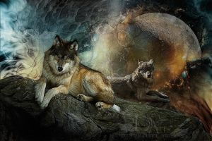 wolves-2012-13 by greenfeed