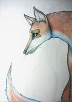 Mysterious fox by Lunicc