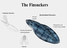 REP: The Finsuckers by Ramul