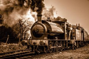 Chasewater Steam 8 by Grunvald